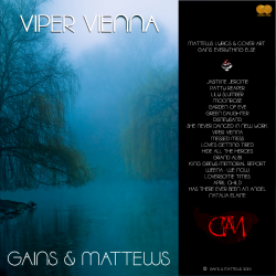 Viper Vienna 2015